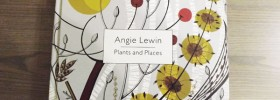 Angie_Lewin_cover.jpg